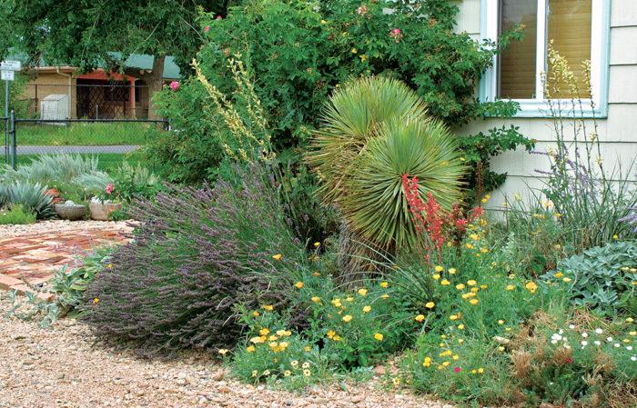 Rethinking Foundation Plantings Finegardening