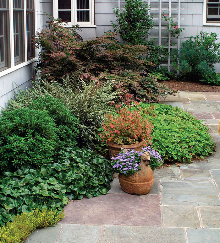 Rethinking Foundation Plantings Finegardening