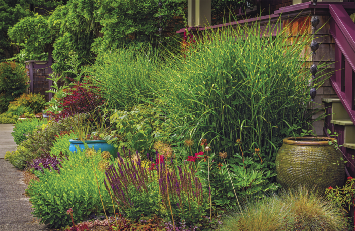 Garden Design Ideas: Color and Form - FineGardening