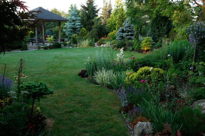 Discipline, Grace, and a Little Open Space – Plant ID's
