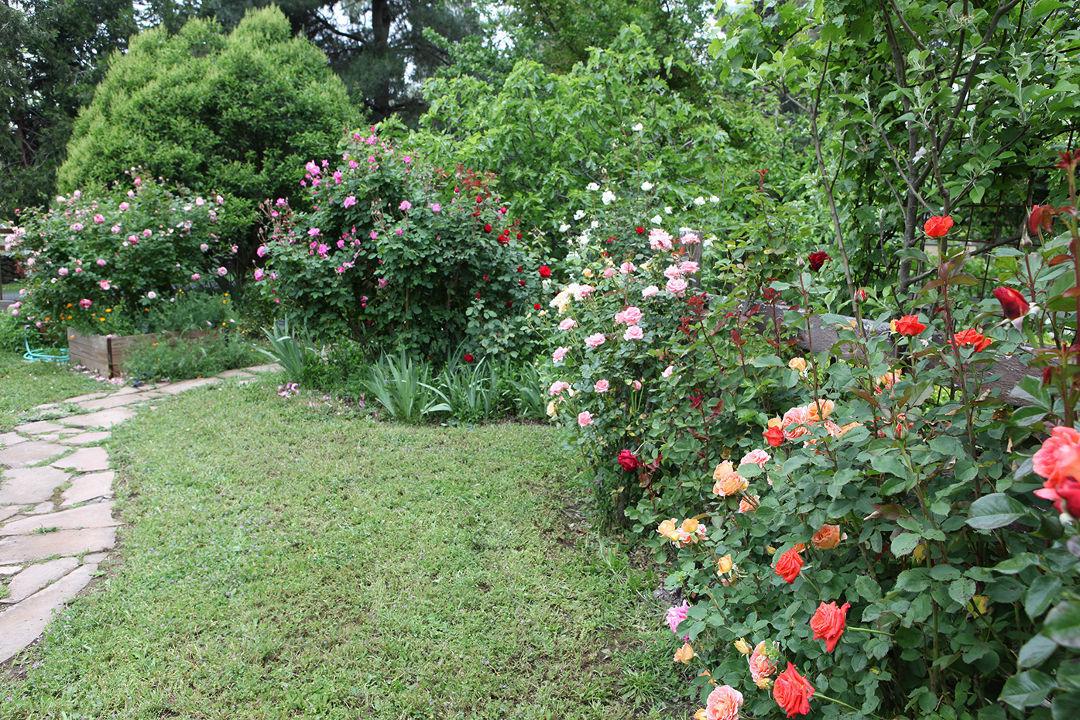 Creating A Romantic Garden Finegardening