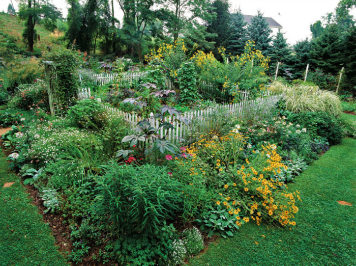 Overflowing Vegetable and Flower Garden