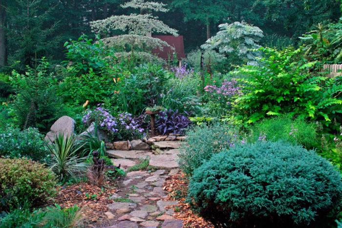 Episode 30: Gardening Wish List for 2019