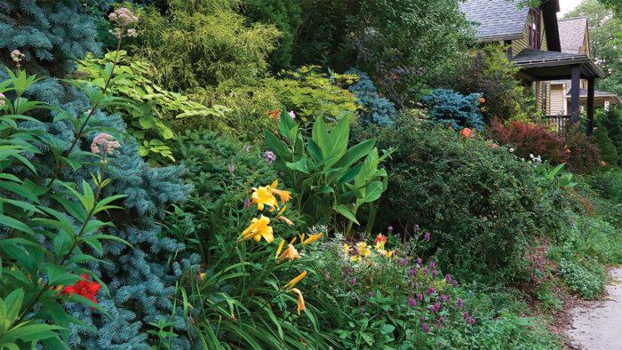 Gardening Basics - FineGardening