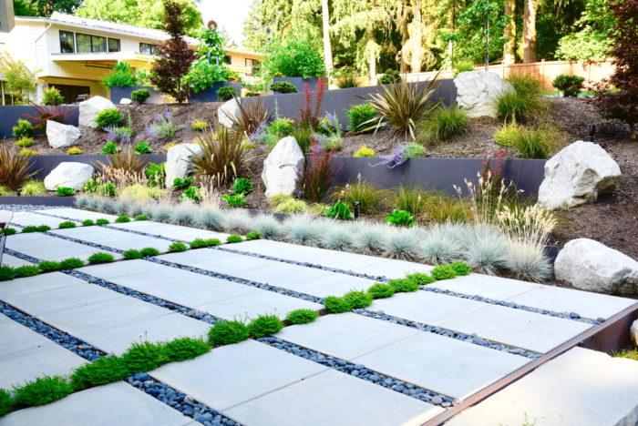 A Modern Garden Design Sensibility - FineGardening