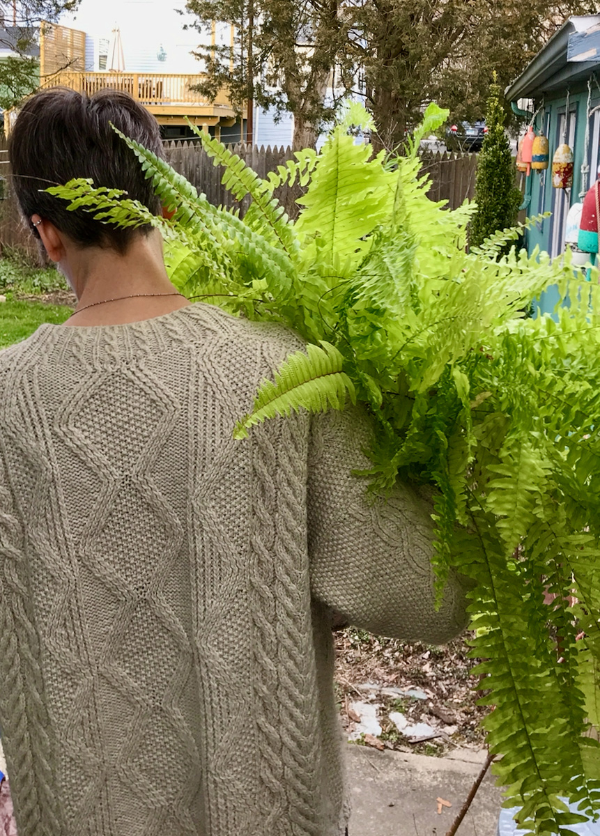 This Boston fern is going outside for the summer.
