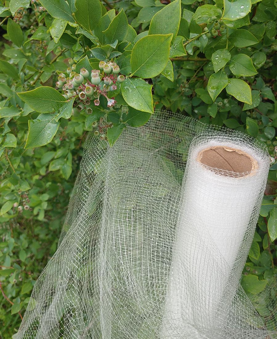 bird netting for plants