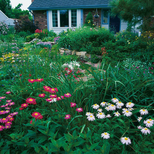 Defining The New American Cottage Garden Finegardening