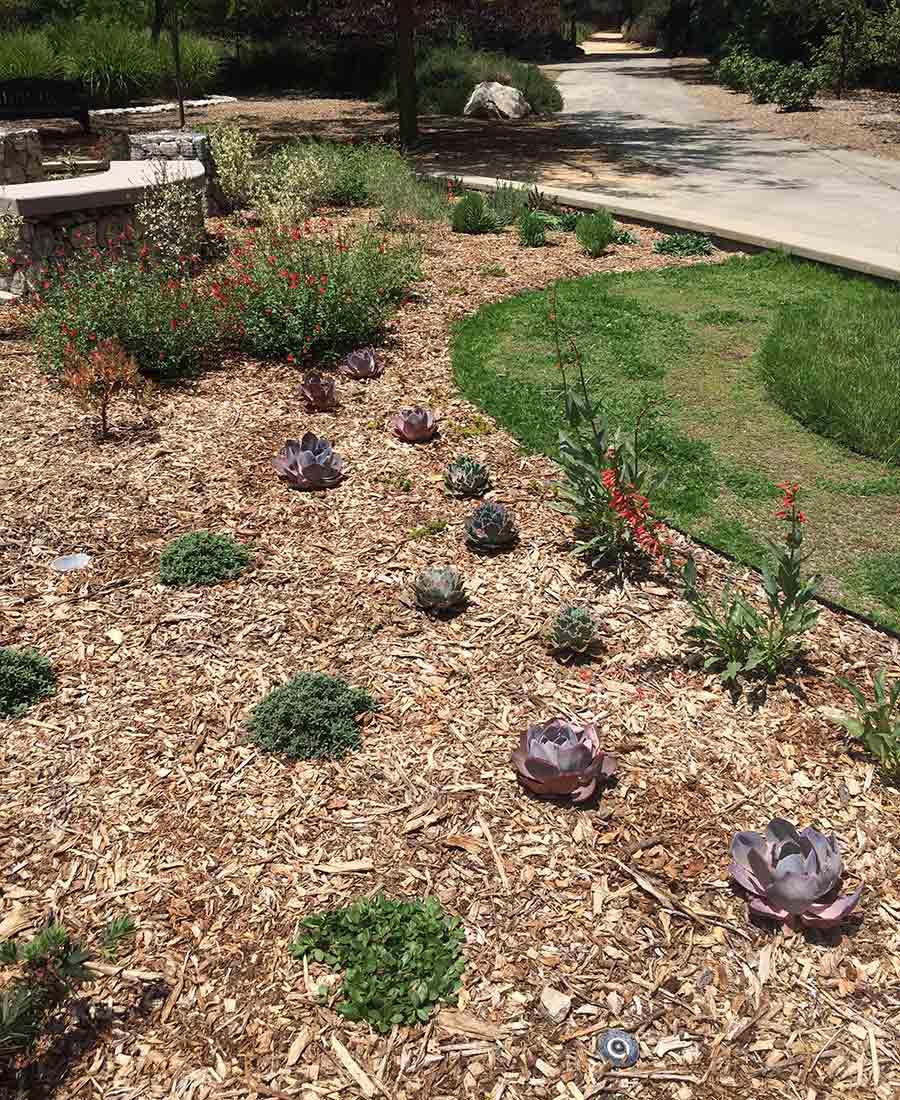 fresh mulch garden