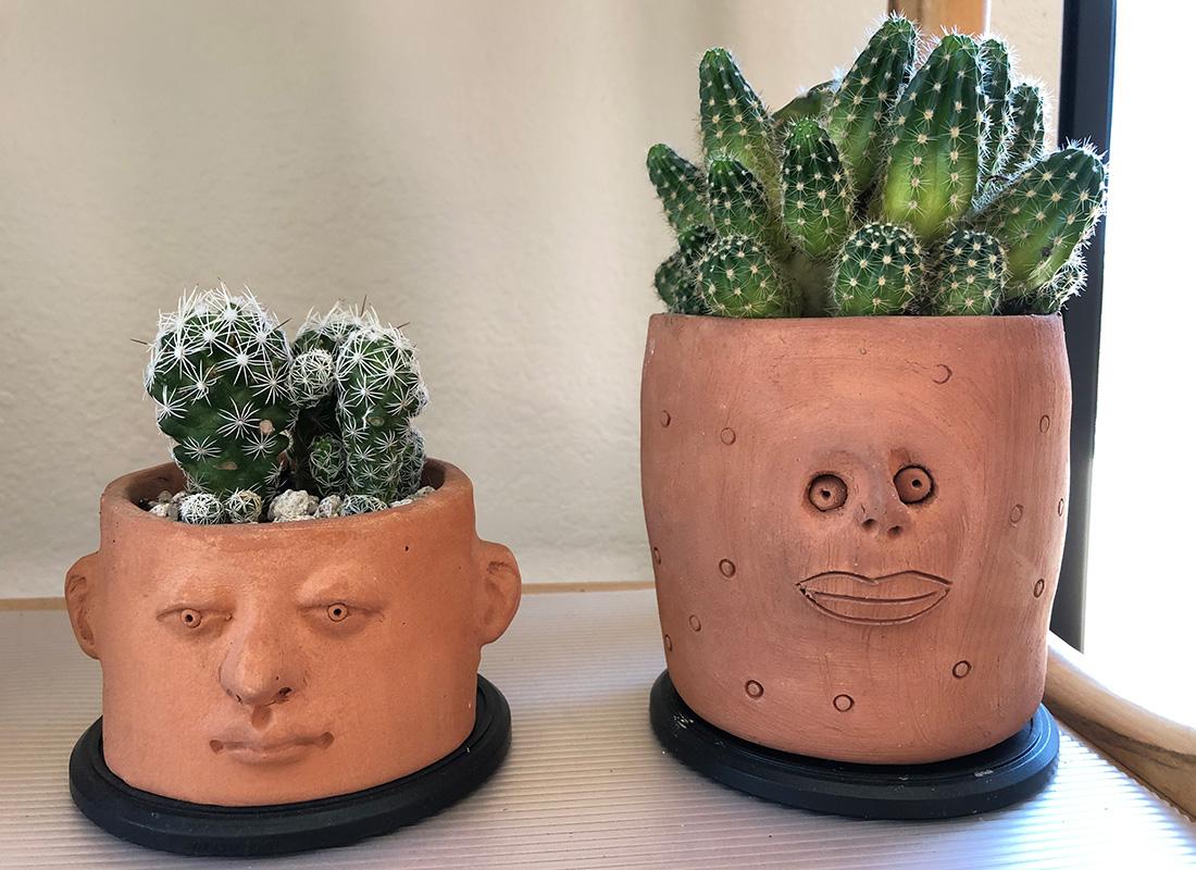 plant pots with faces