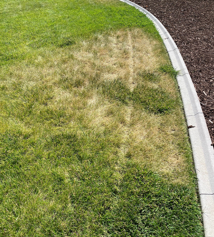 irrigation coverage issue