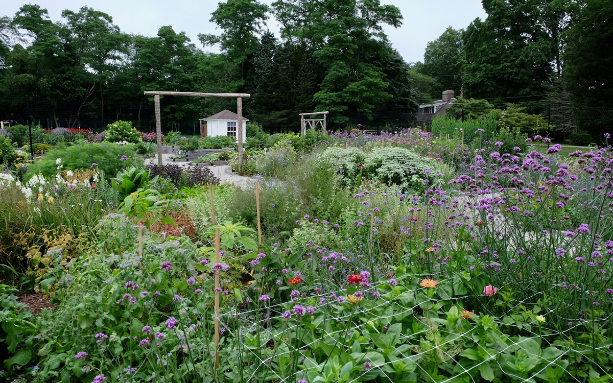 tightly packed garden