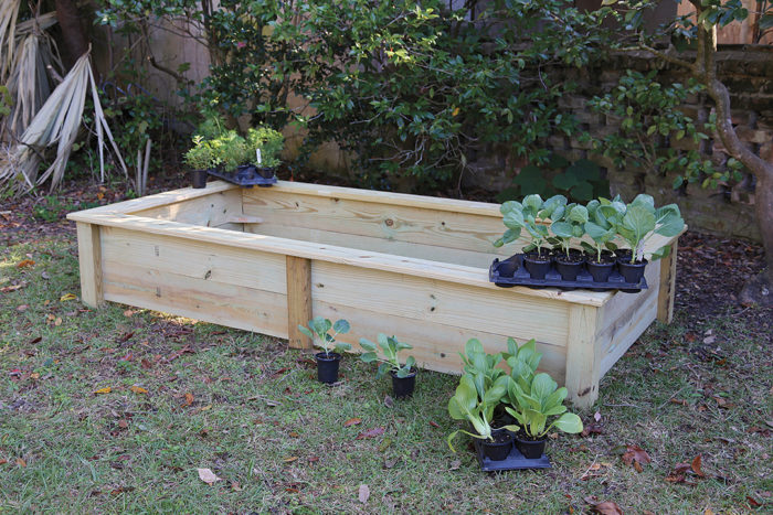 More Raised Bed Design Ideas - FineGardening on greenhouse design plans, raised vegetable garden design ideas, cedar raised garden bed plans, privacy fence design plans, best raised garden plans, diy raised garden beds plans, raised garden layout, raised bed garden box design, marshmallow catapult design plans, cheap raised garden bed plans, raised garden planting plans, corner pergola design plans, small garden design plans, vegetable garden design plans, raised bed gardening designs, exhibition booth design plans, attached pergola design plans, easy raised garden plans, luxury home design plans,