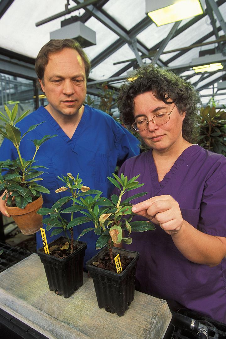 USDA Plant pathologists Paul Tooley and Nina Shishkoff
