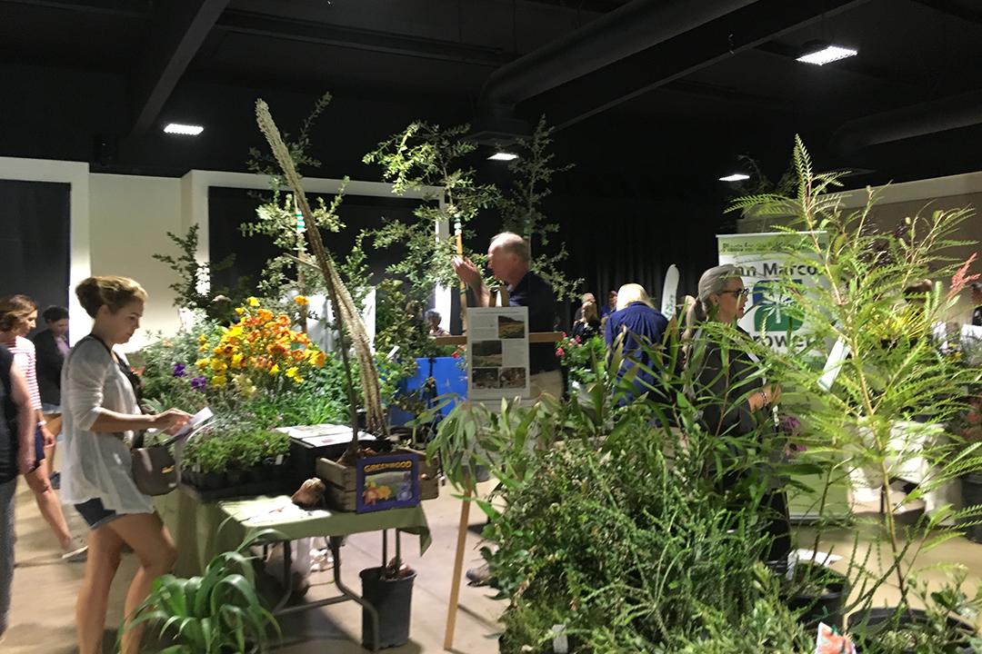 The 1st Annual Designer Plant Fair, 2018