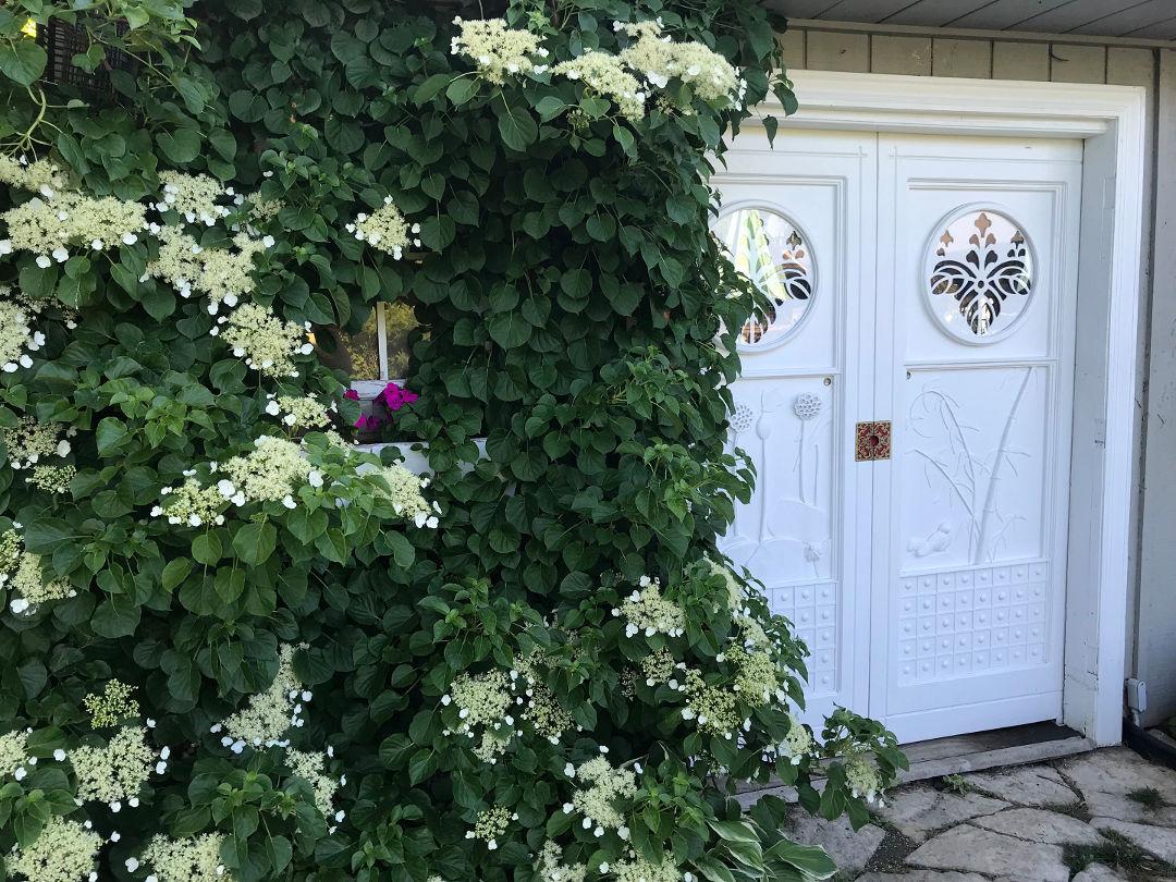 A Creative DIY Garden - FineGardening