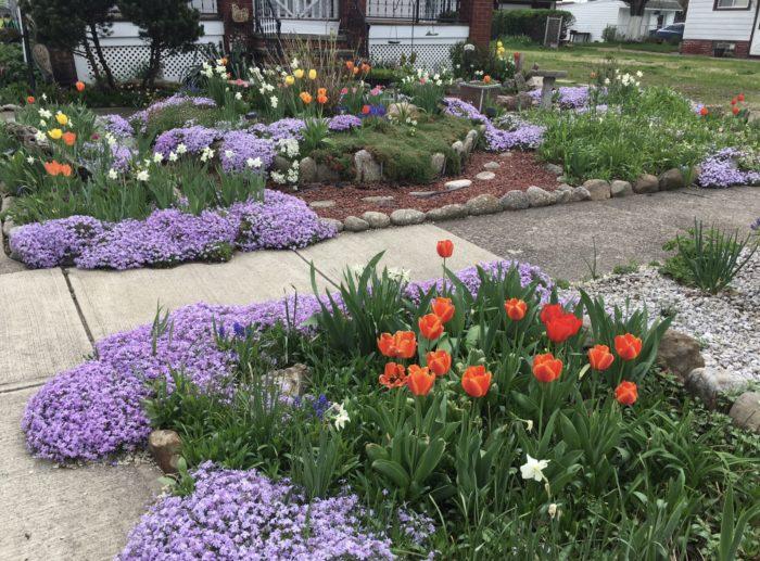 Garden Visions Achieved