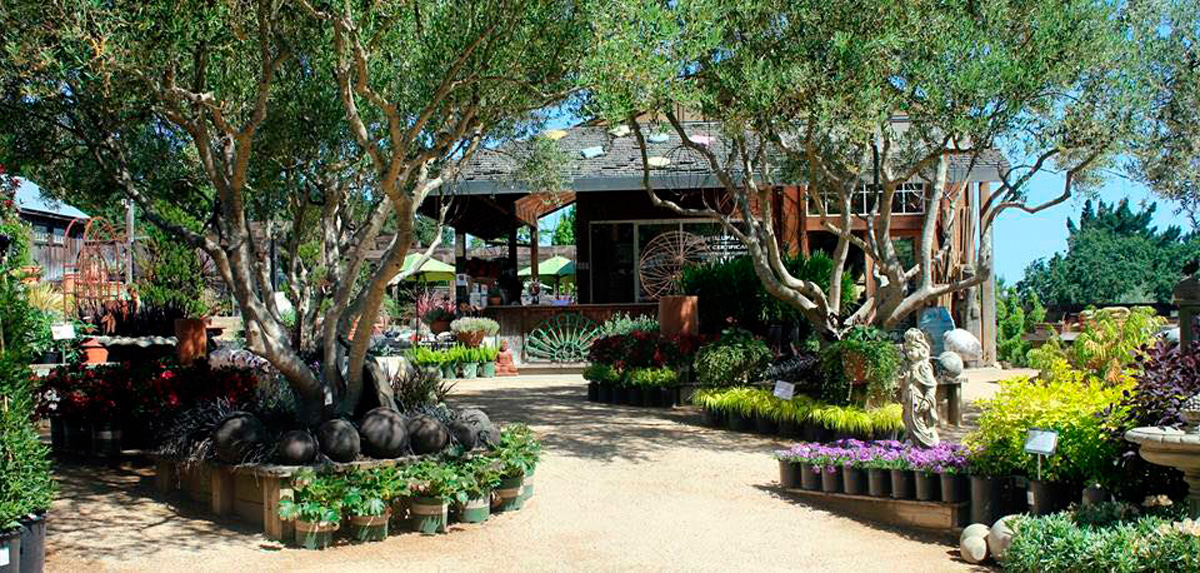 Cottage Gardens of Petaluma, CA