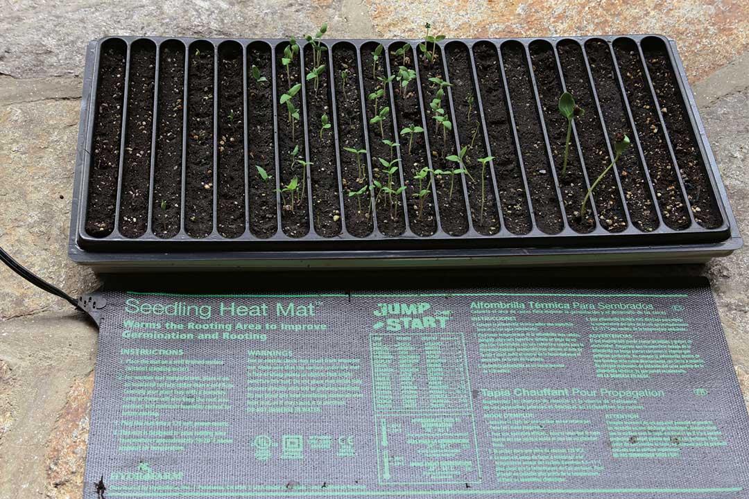 Seedling heating pad mat