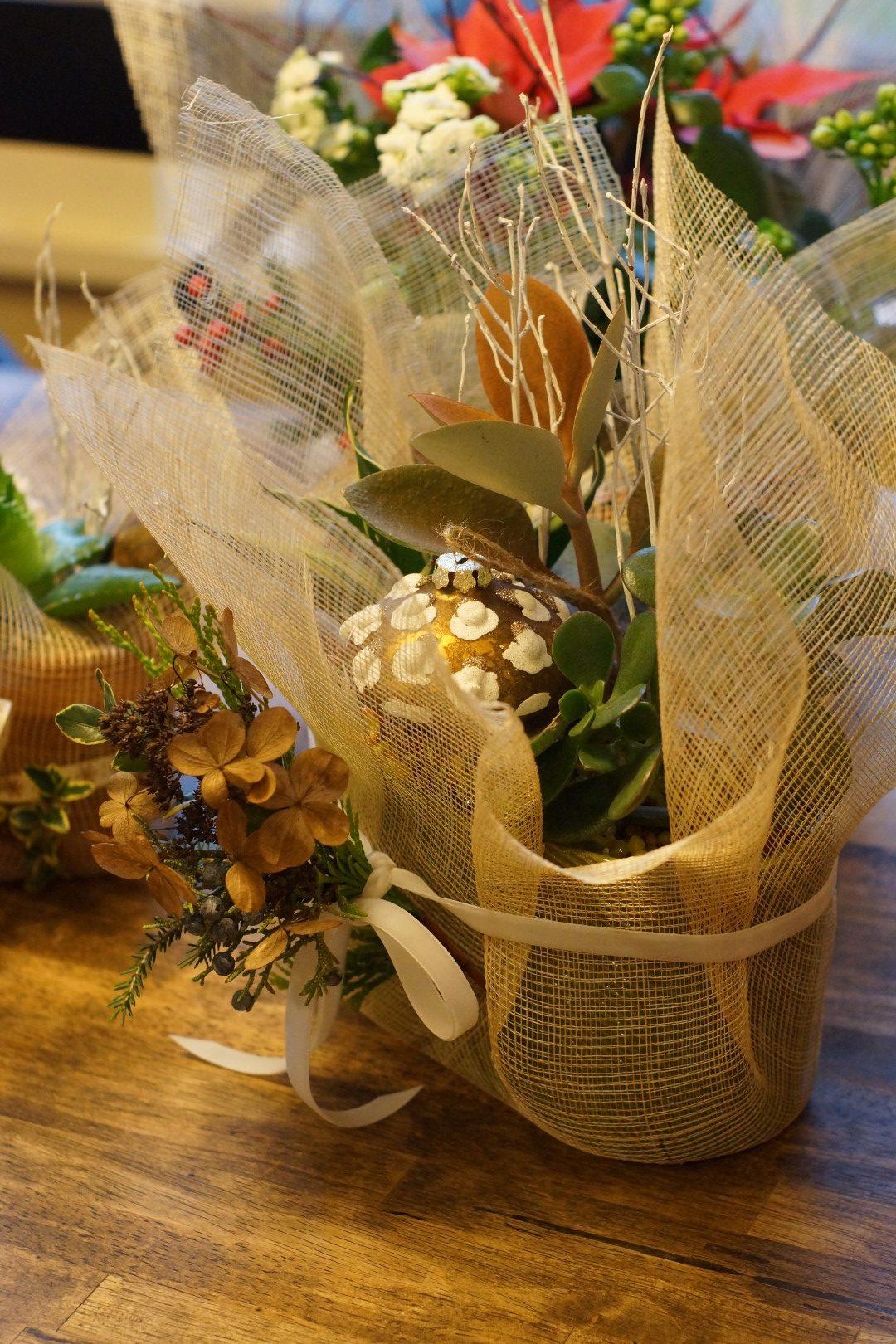 winter succulent container