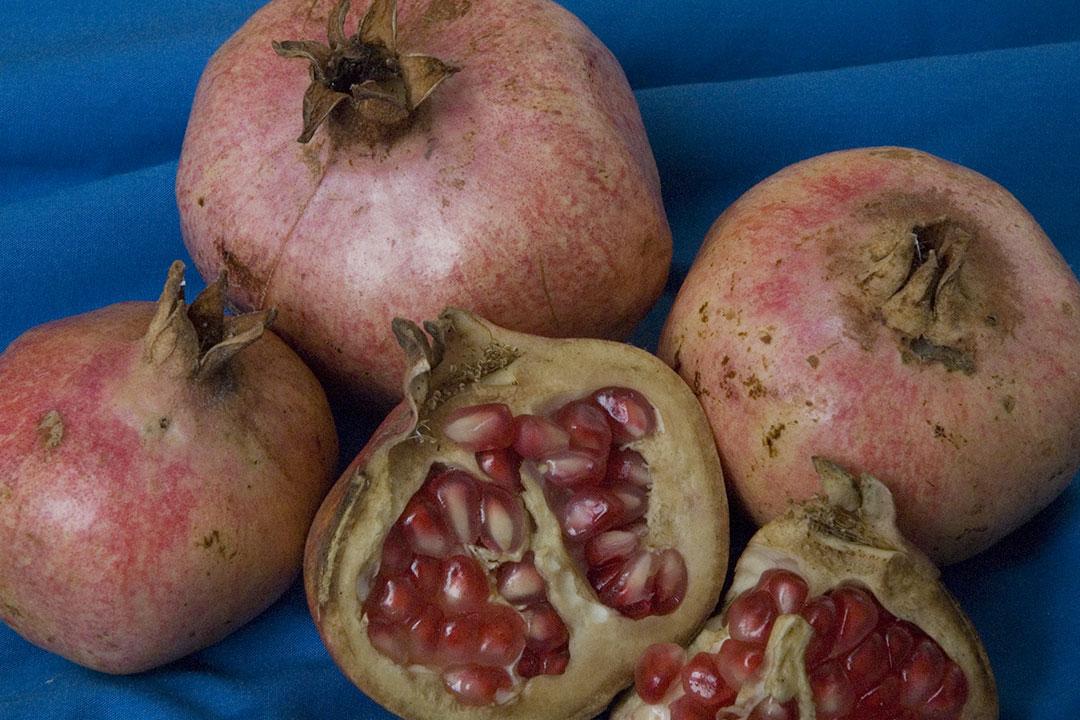 'Ambrosia' pomegranate