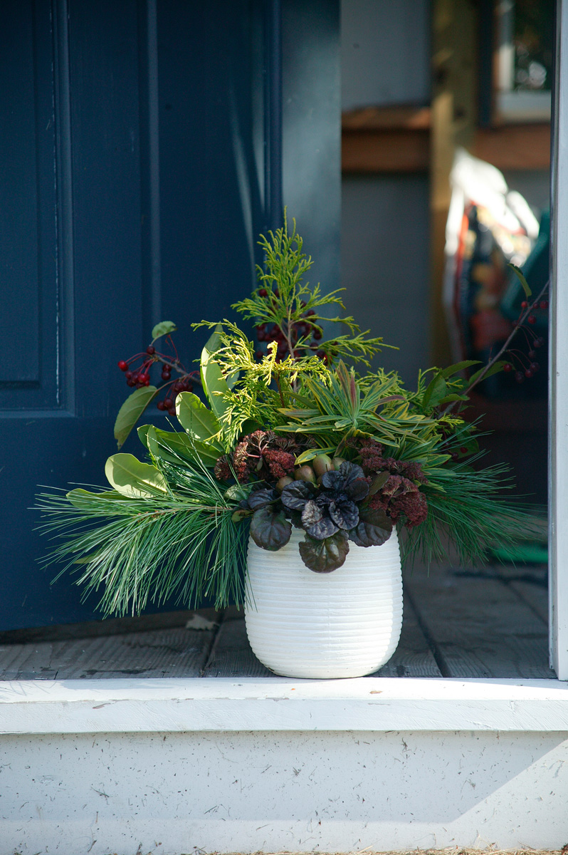 Beautiful Holiday Container