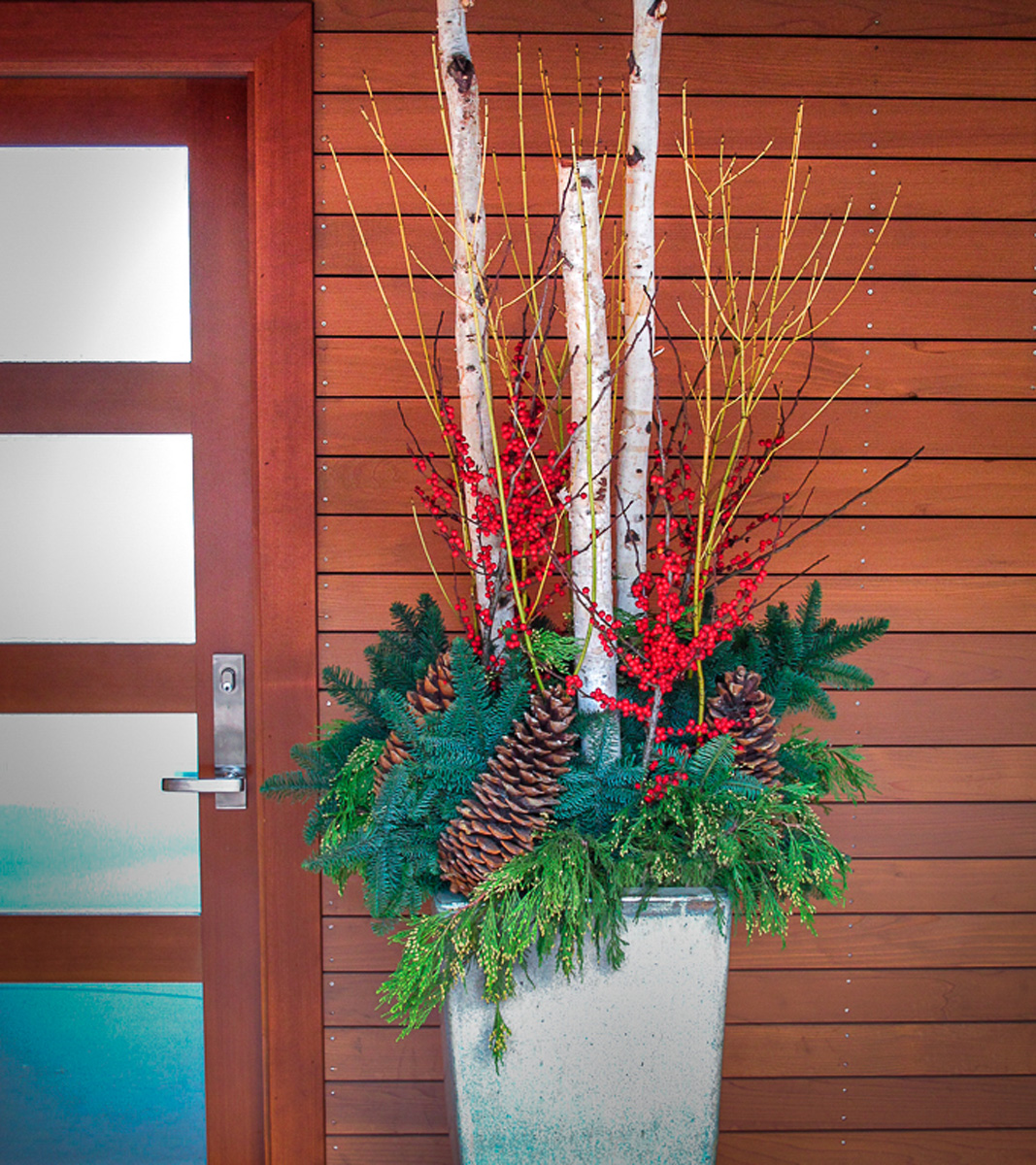 Beautiful Holiday Container - birch, dogwood, winterberry