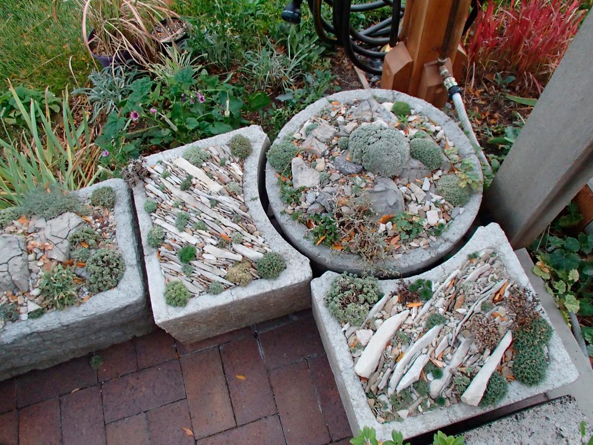 Tony Stireman's Salt Lake City container garden is designed using crevice gardening