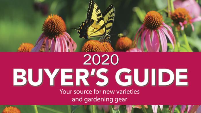 Gardening Buyer's Guide 2020