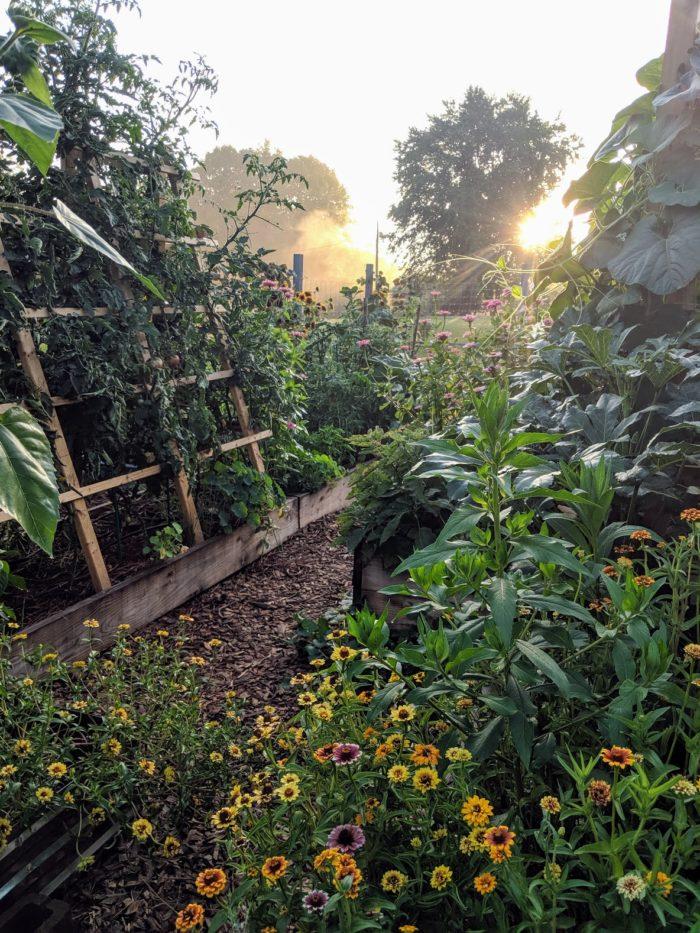 A Visit to Rainsong Garden