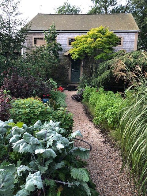 Garden of a Busy Cook