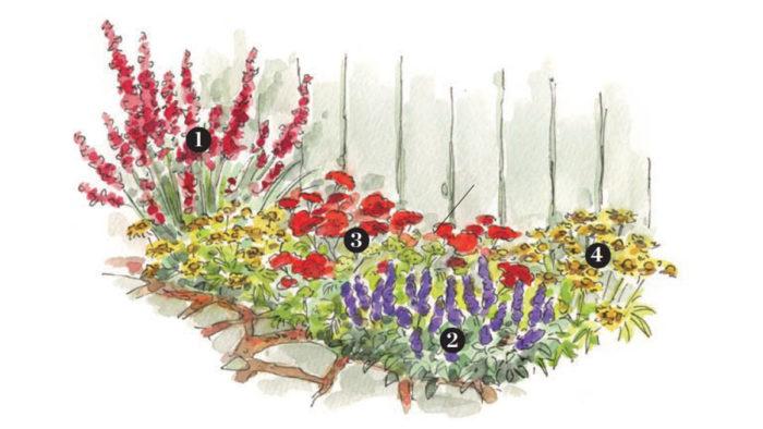 Best Plants for Beautiful Seasonal Combos by Region