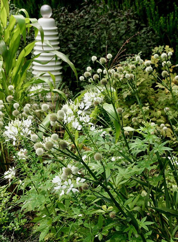 Bedrock Garden's White Garden