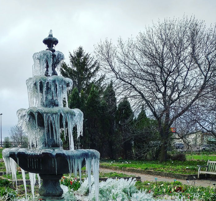 fountain covered in ice