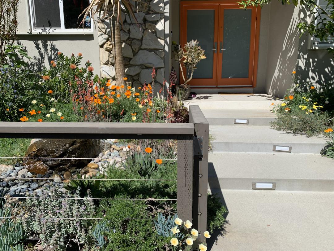 drought-tolerant landscaping
