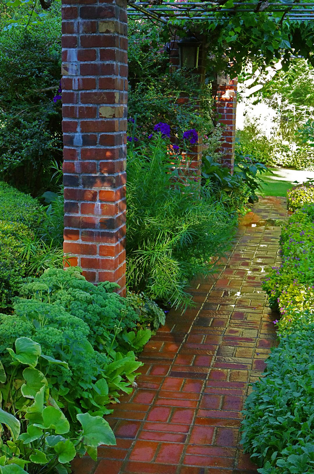 brick path in the garden