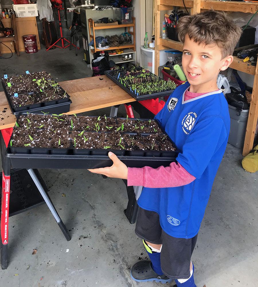 kids starting seeds