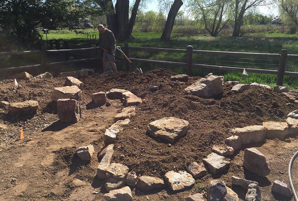 building a rock garden