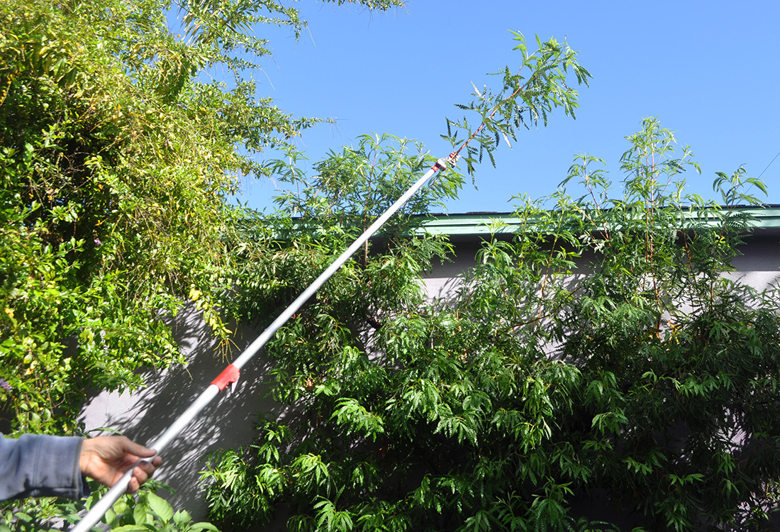 long reach pruner