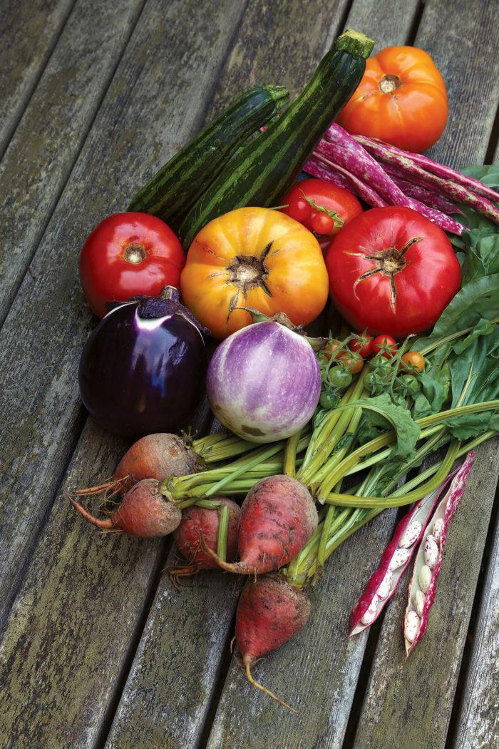 Veggie Garden Tips & Tricks-  Free Download