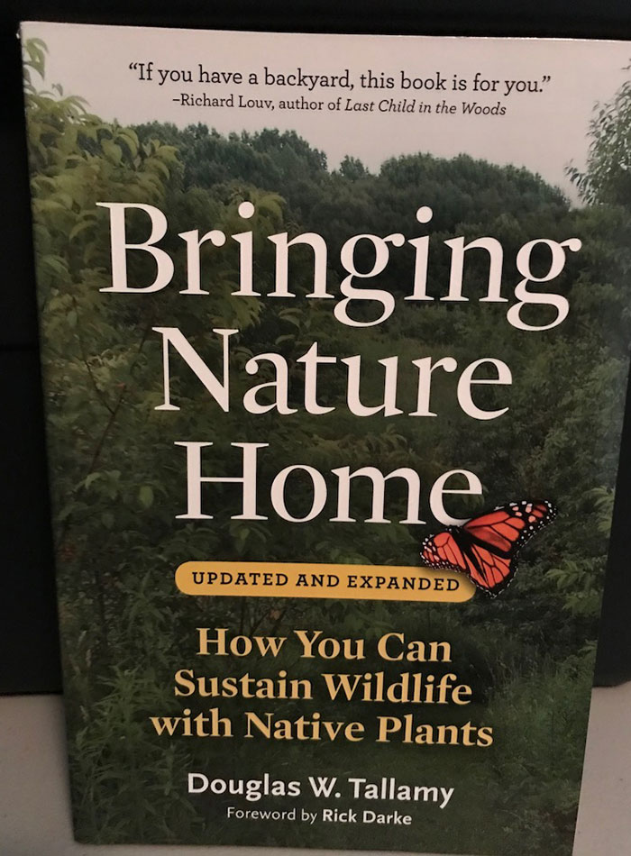 bring nature home how you can sustain wildlife with native plants