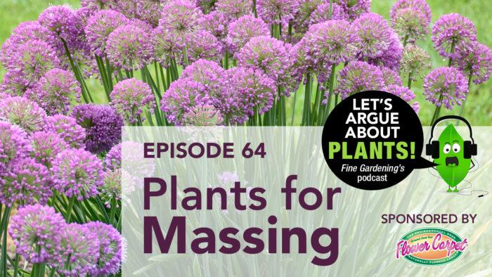 Episode 64: Plants for Massing