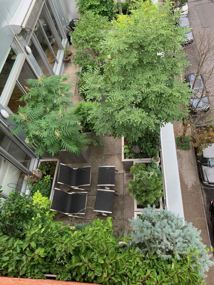 A Terrace Garden in Canada