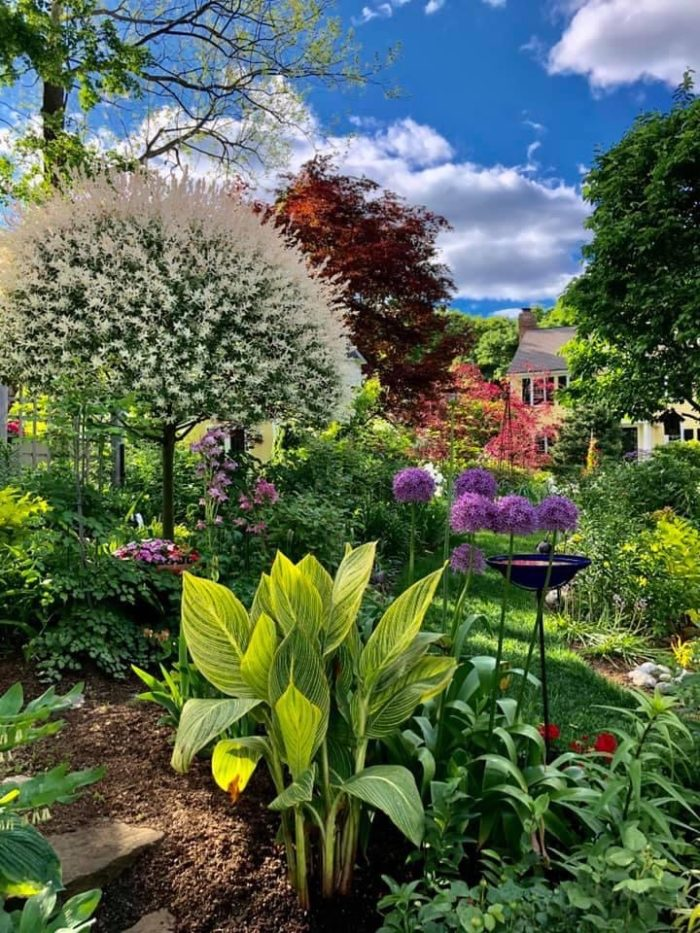 A Garden to Linger In