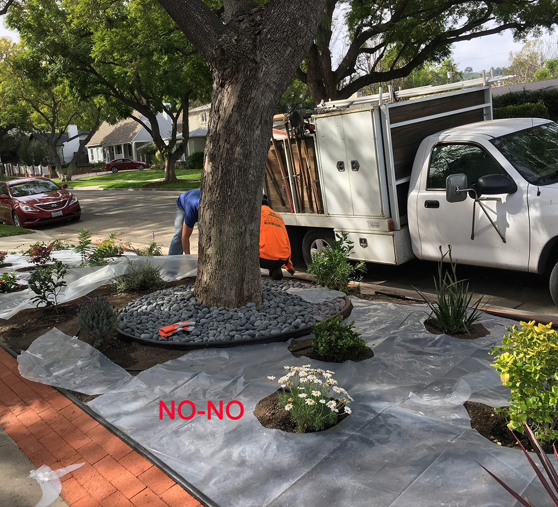 landscaping plastic