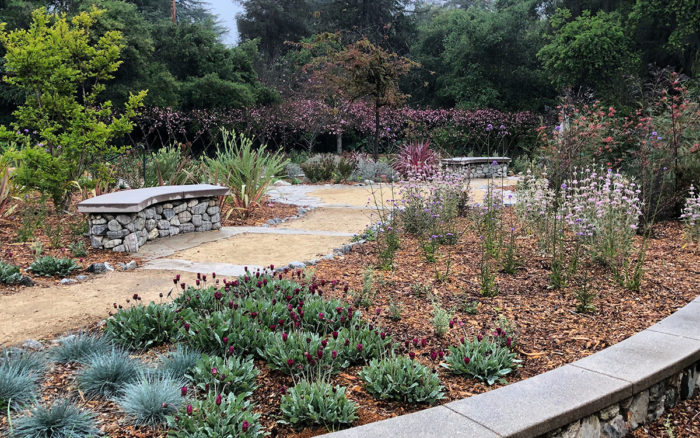 The Pros and Cons of Different Types of Mulch for Southern California