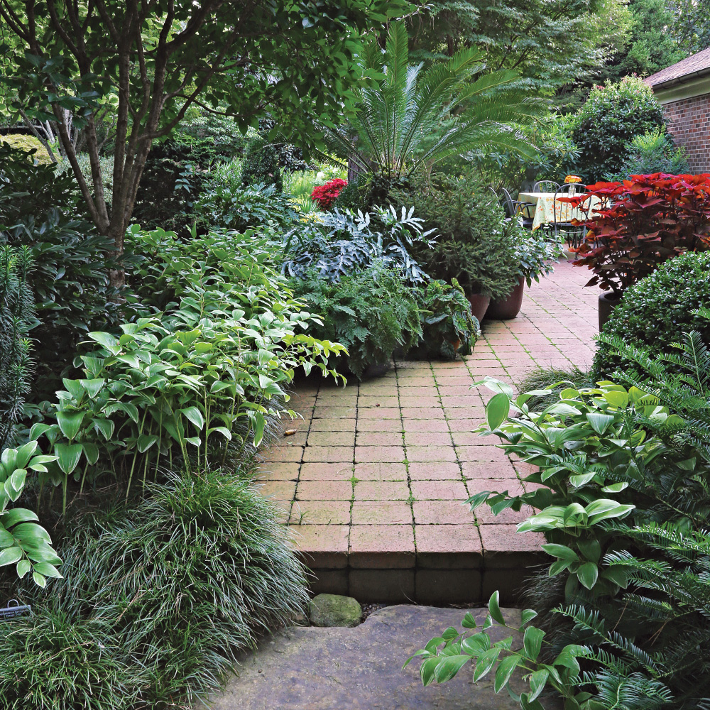 plants with pavers