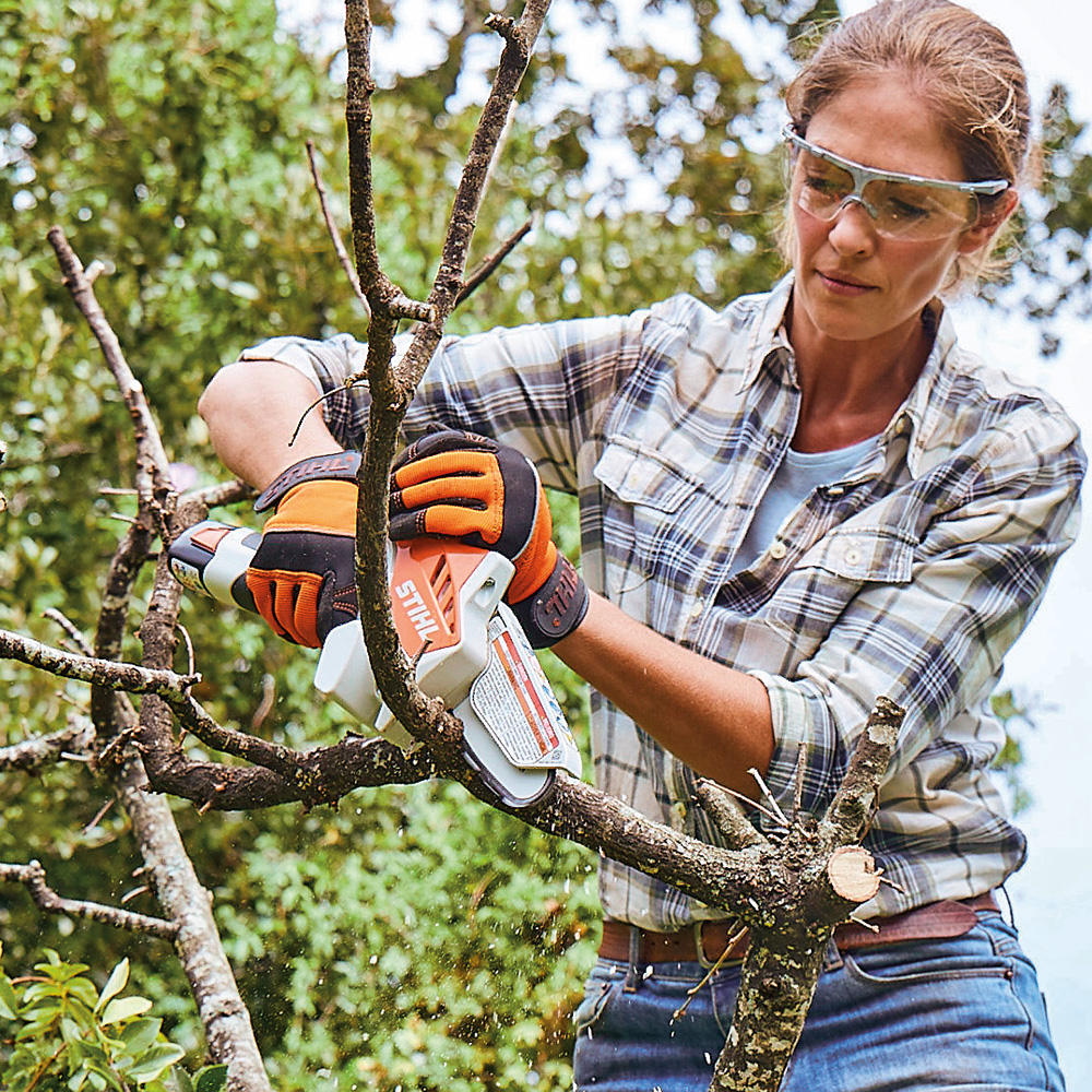 Stihl pruning saw