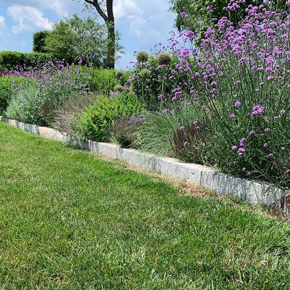 tightly planted garden