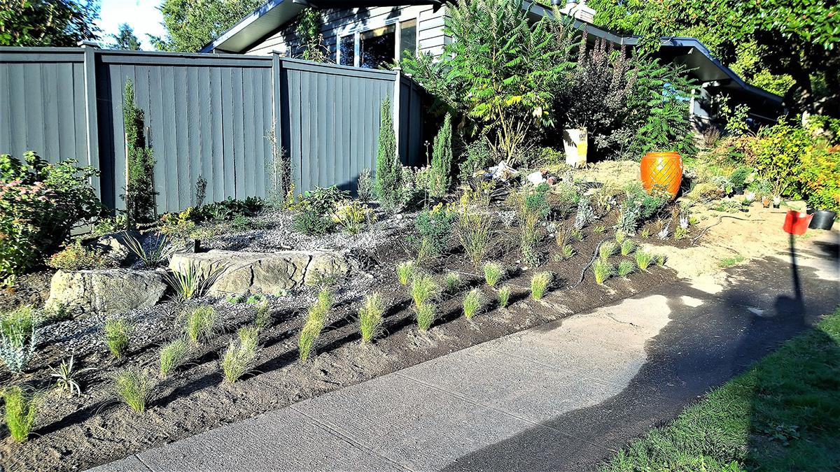 just planted garden